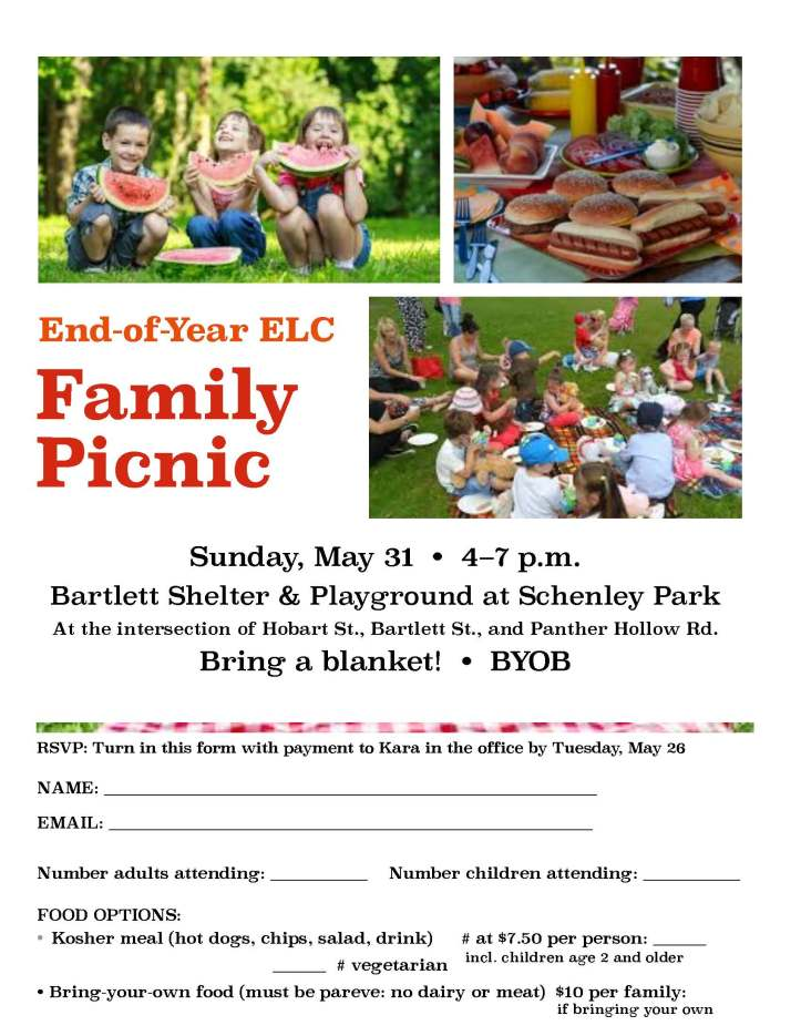 End of Year Picnic Flyer 2015